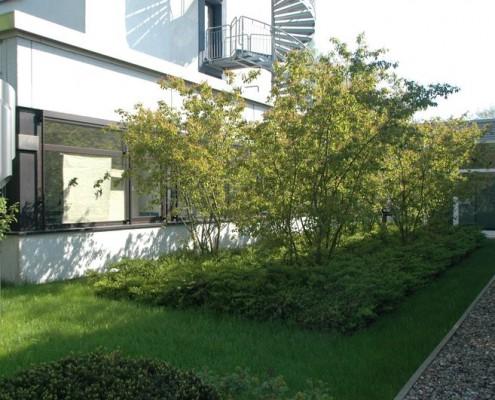 Eingangsbereich für ein Institut in Neumünster, Dipl. Ing. Heino Gamradt