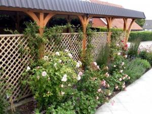 Carport mit Kletterpflanzen, Dipl. Ing. Heino Gamradt