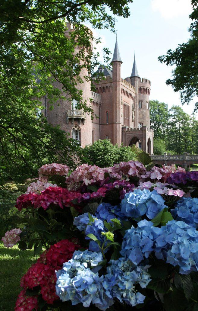 Hortensien und Schloss Moyland von Südwesten