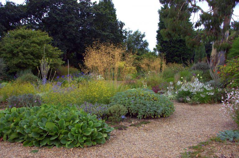 Kiesgarten Musterbeispiel: Der Kiesgarten der englischen Gestalterin Beth Chatto begeistert Besucher aus aller Welt – und kommt komplett ohne Bewässerung aus. (Bildnachweis: GMH/ Bettina Banse)