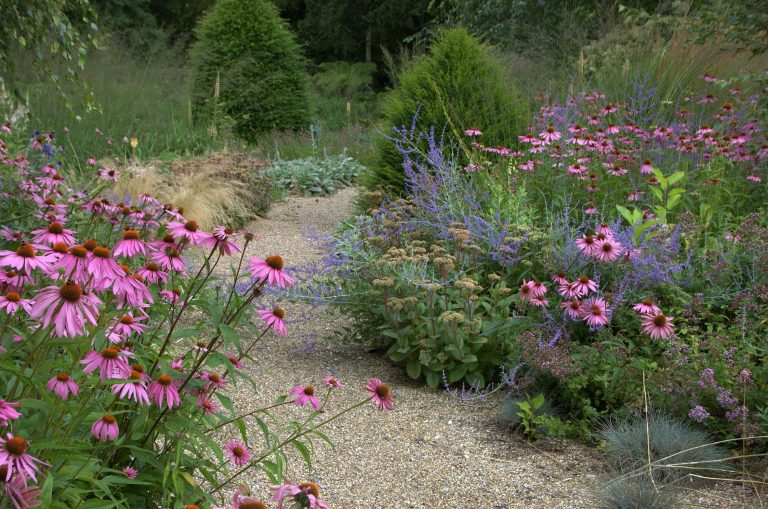 Kiesgarten Wege und Beetflächen gehen nahtlos ineinander über. Dadurch entsteht das wunderbare Gefühl, mittendrin in der Natur zu sein. (Bildnachweis: GMH/Bettina Banse)
